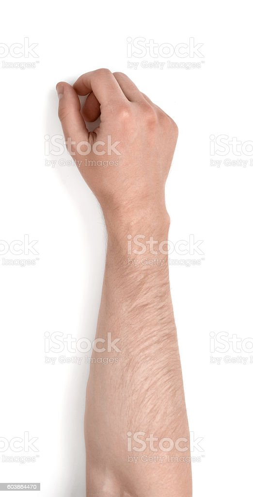Close up view of a man's hand isolated on bildbanksfoto