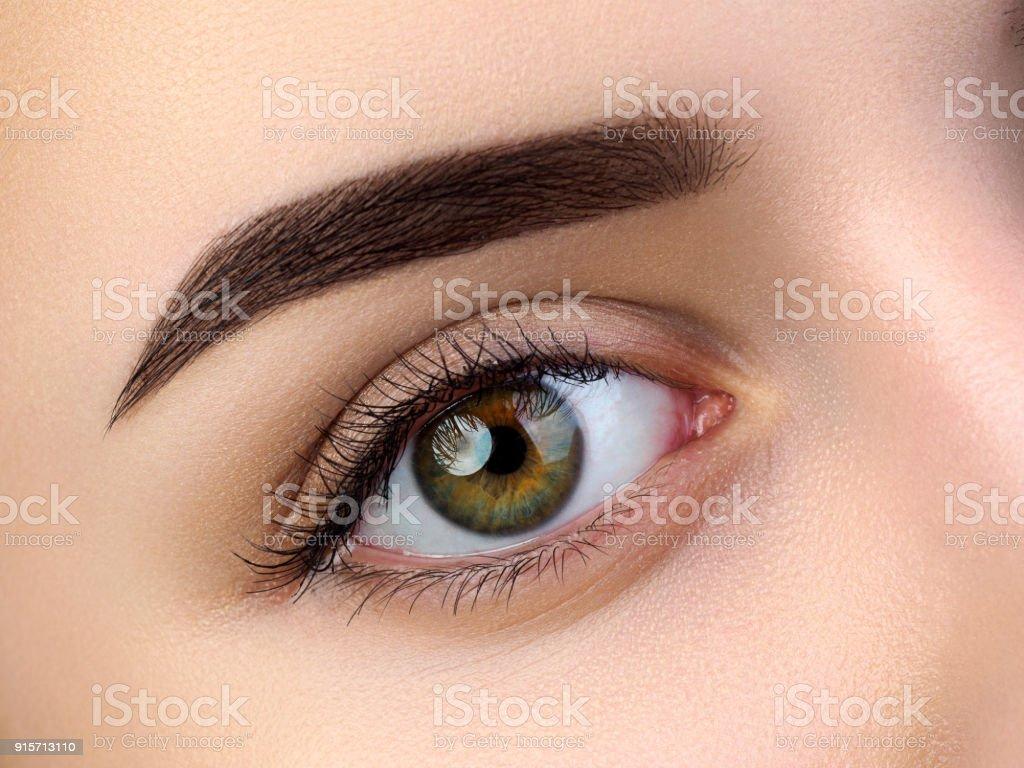 Nahaufnahme des schönen braunen weibliche Auge – Foto