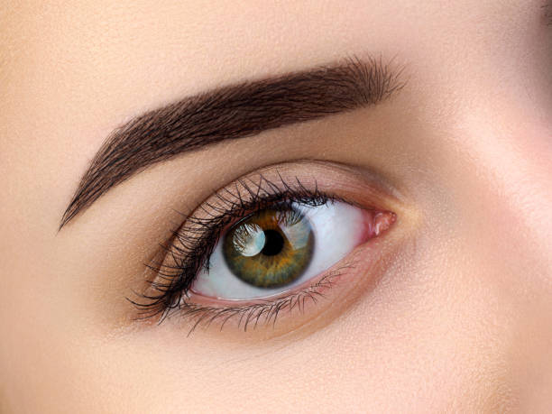 Close up view of beautiful brown female eye stock photo
