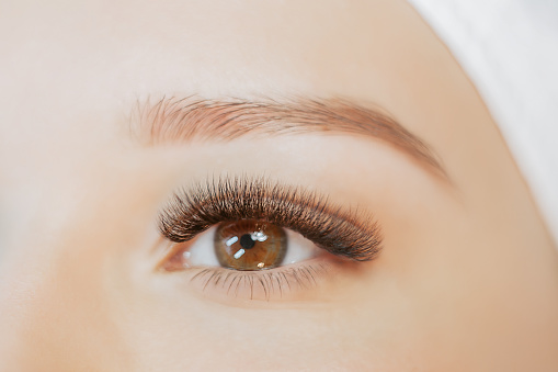 Close up view of beautiful brown female eye with long eyelashes, smooth healthy skin. Eyelash extension procedure. Perfect trendy eyebrows. Good vision, contact lenses. Eye health and care.