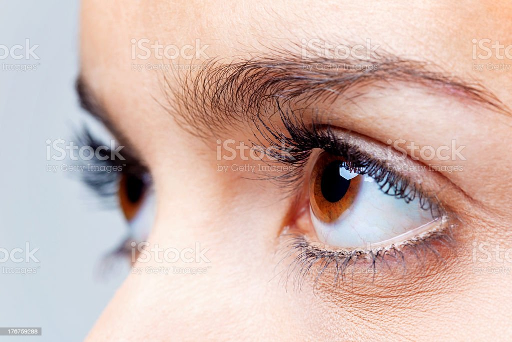 Close up view of big brown eyes stock photo