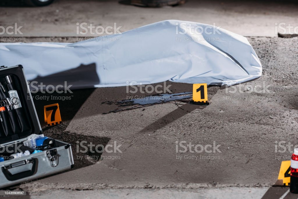 close up view of corpse in body bag and case with investigation tools at crime scene stock photo