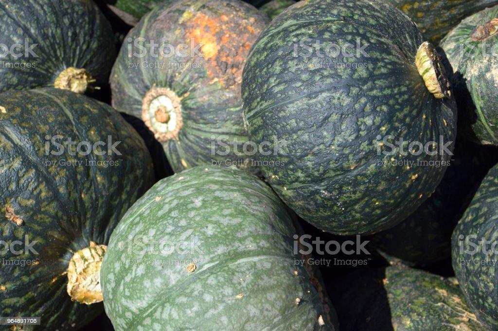 close up view of green kuri squash royalty-free stock photo