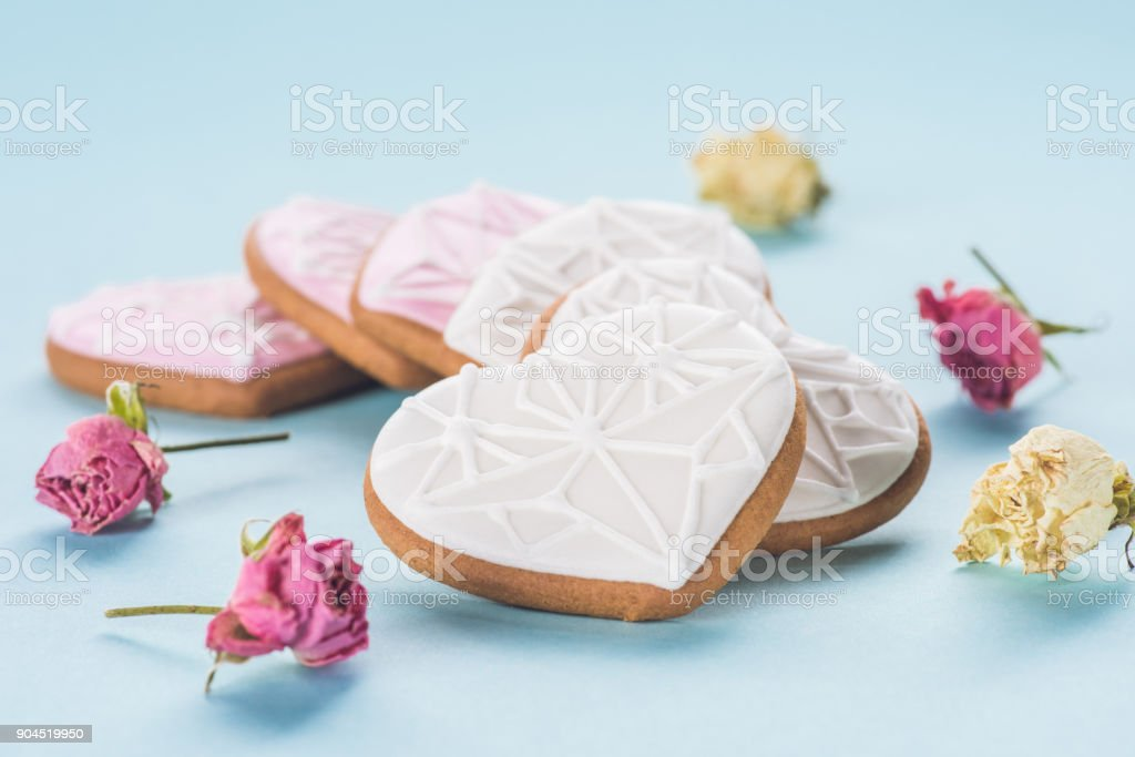 close up view of heart shaped cookies and decorative flowers isolated on blue stock photo