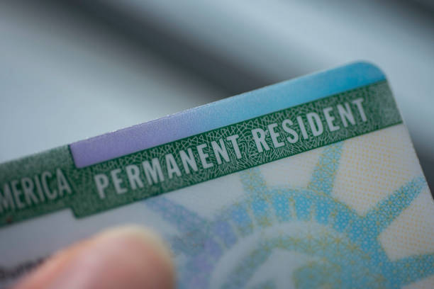 Close up view of Permanent resident card (Green) card of USA on blurred background. Close up view of Fragment of Permanent resident card (Green) card of USA on blurred background. green card stock pictures, royalty-free photos & images