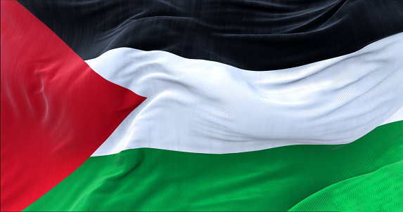 close up view of the flag of Palestine waving in the wind. Selective focus.
