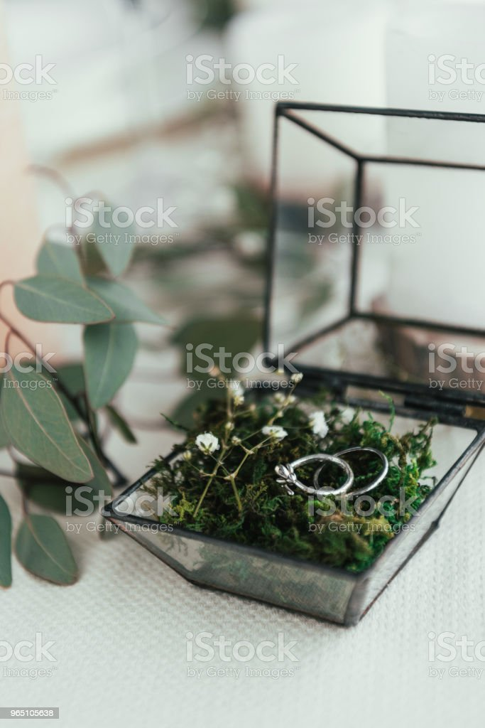 close up view of wedding rings in rustic box with plants inside royalty-free stock photo
