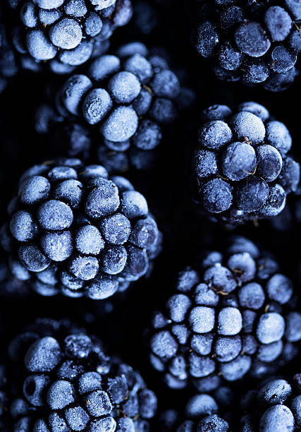 close up view on frozen blackberry fruits a black stone - frozen berries stock photos and pictures