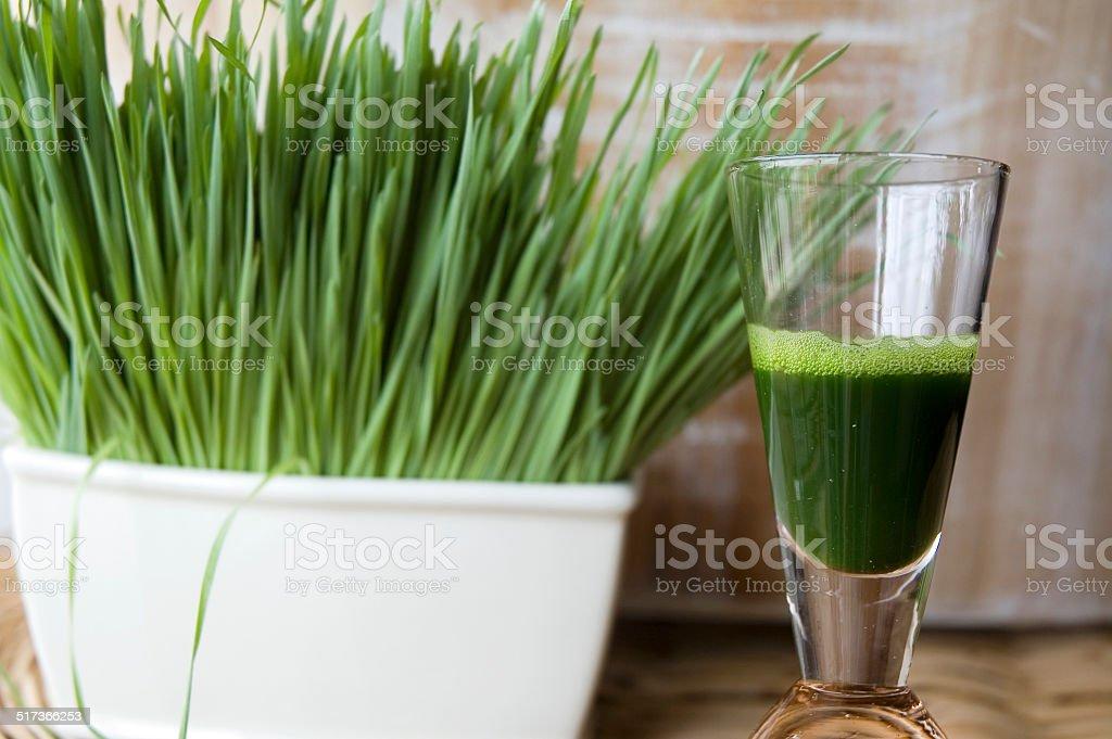 close up wheatgrass juice shot stock photo