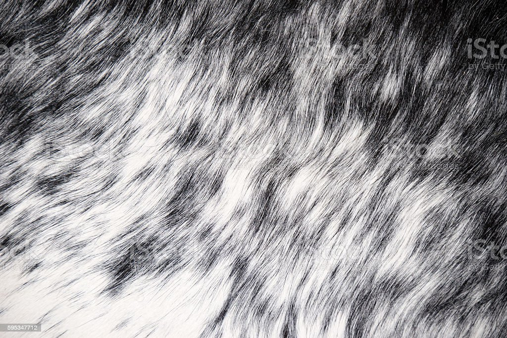 Close up white and black Faux mat for texture background stock photo