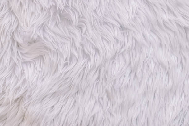 Close up white shaggy artificial fur texture or carpet for background. Close up white shaggy artificial fur texture or carpet for background. animal hair stock pictures, royalty-free photos & images