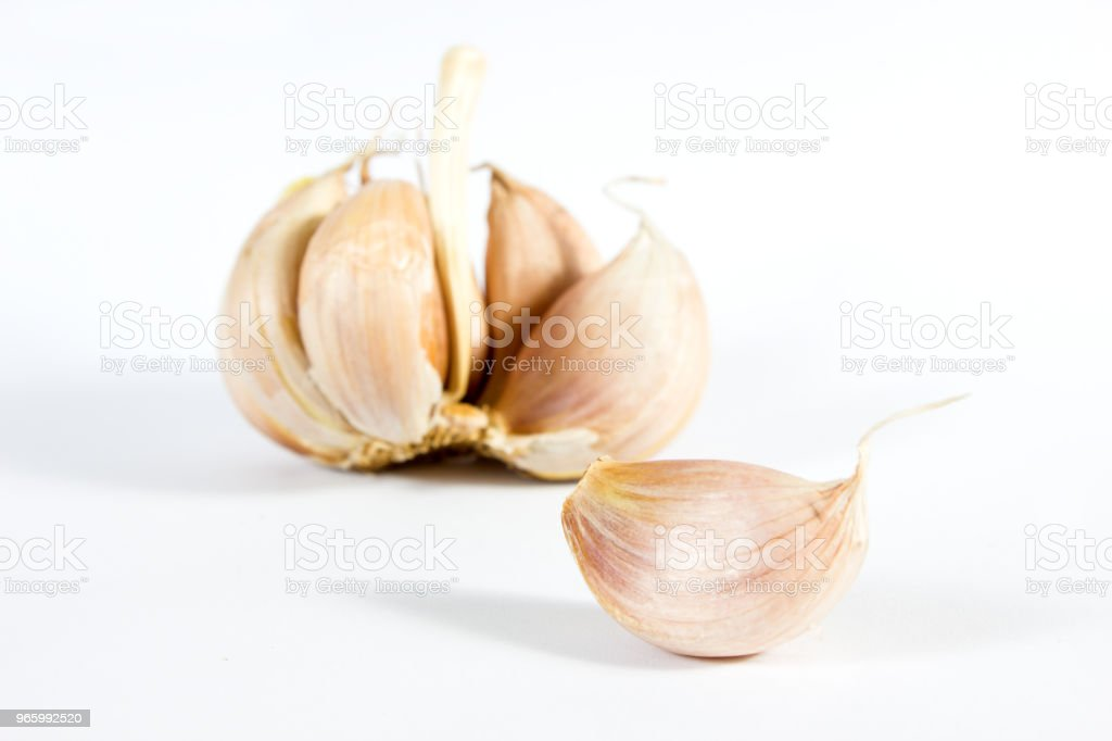 Close up whole white garlic on white background. - Royalty-free Agriculture Stock Photo