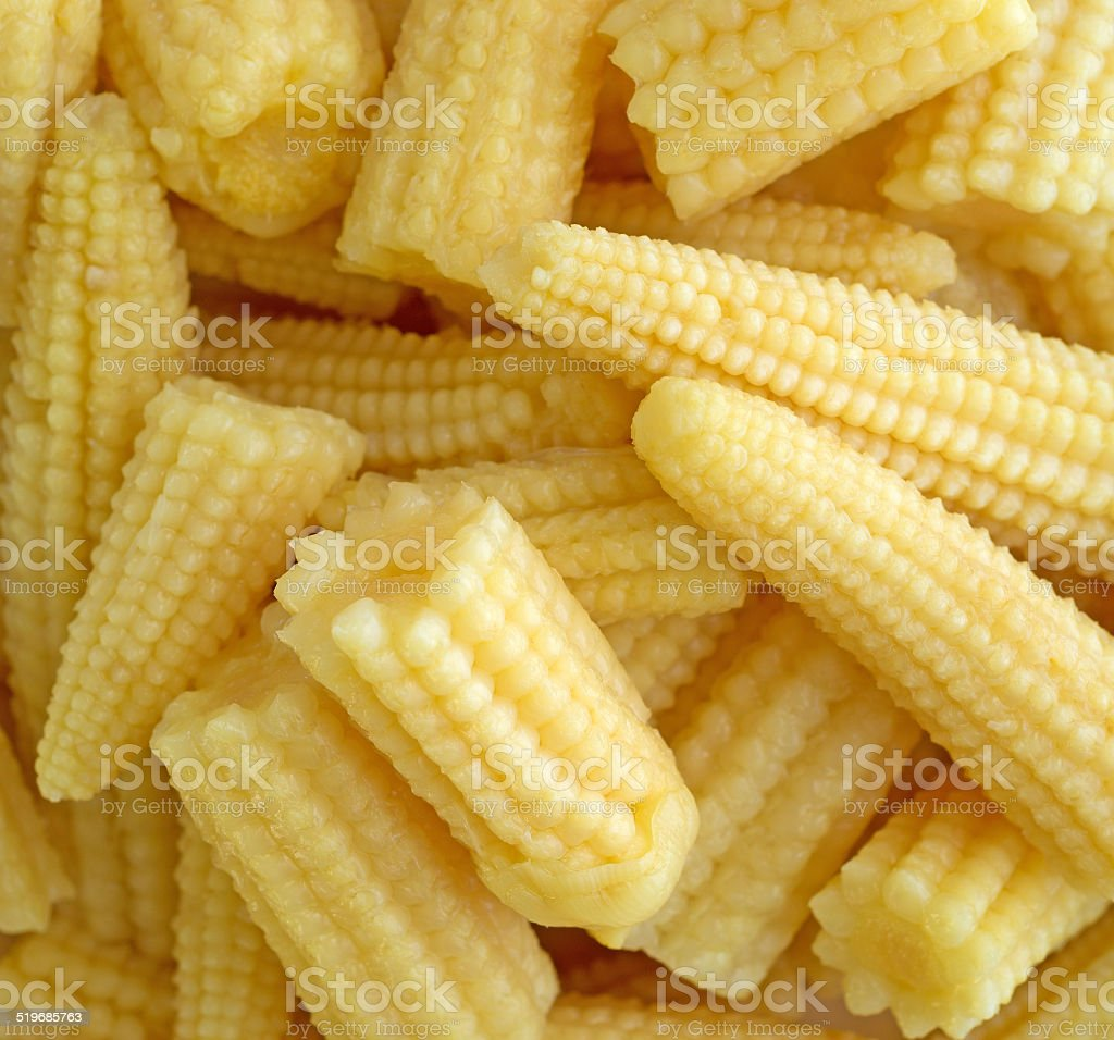 Close view of baby corn nuggets stock photo