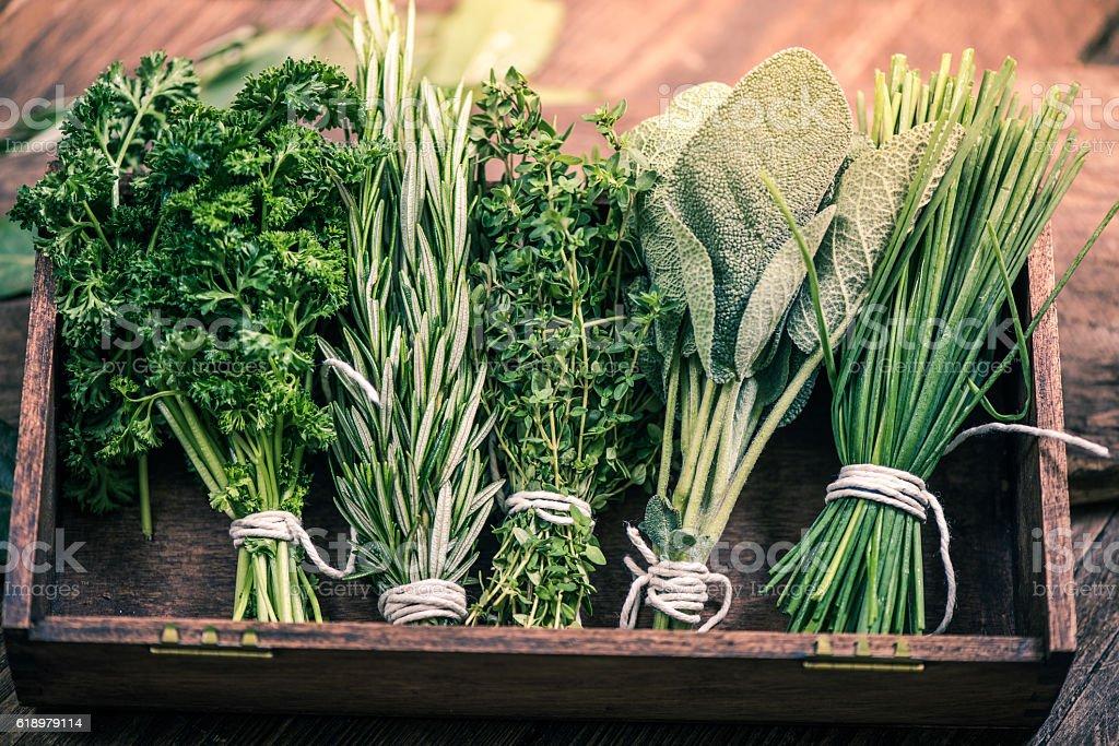 close view on fresh herbs – Foto