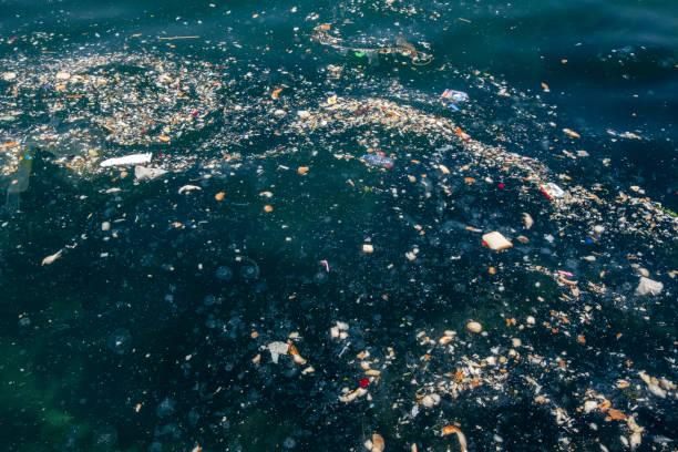 Close view to marine pollution stock photo