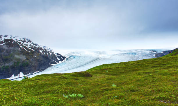 Closed clouds day, overlooking the Exit Glacier showing its blue ice, white snow, and a lush landscape. Portrait, fine art. Exit Glacier in Kenai Fjords National Park, Alaska. July 27, 2018 stock photo