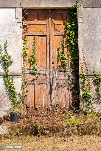 istock Closed door of an abandoned old house. 1289079558