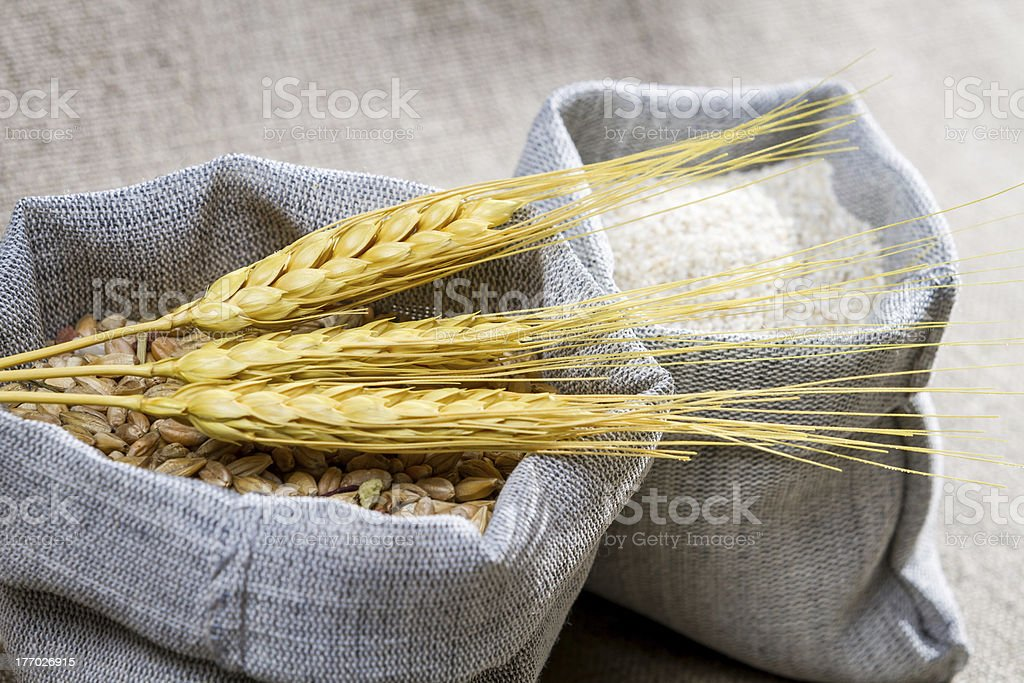 Closep canvas sack of wheat stock photo