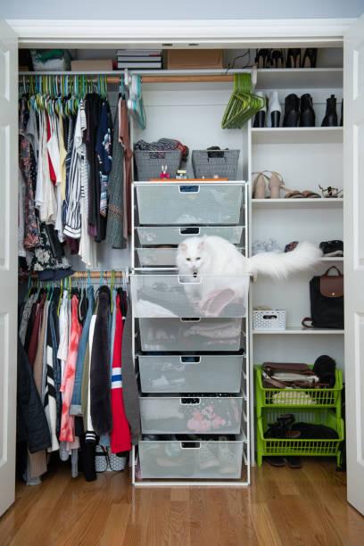 closet-organisation - garderobe mit schuhschrank stock-fotos und bilder