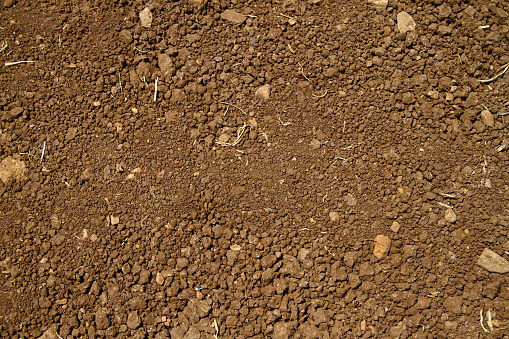 Sand ground