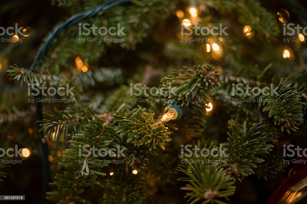 Close Up Background Image Of Lights On Christmas Tree Royalty Free Stock Photo