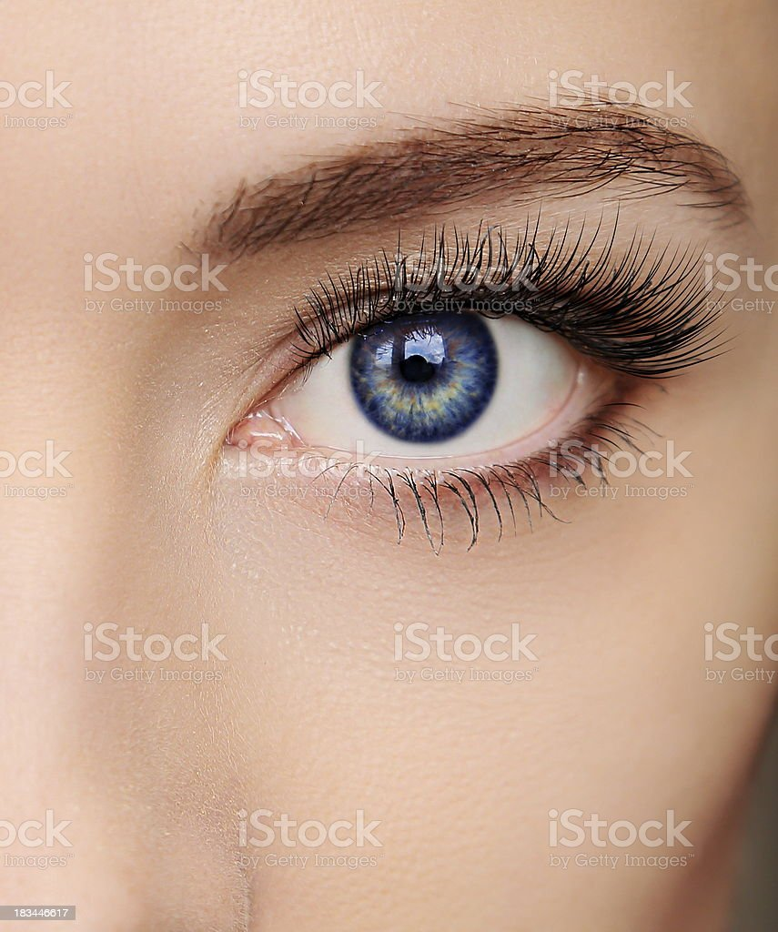 Closeup beautiful blue woman eye with long salon lashes looking stock photo