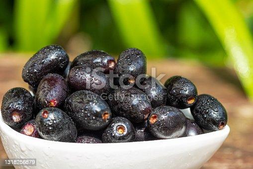 istock Closeup Black plum Java plum Purple Fruits 1318256879