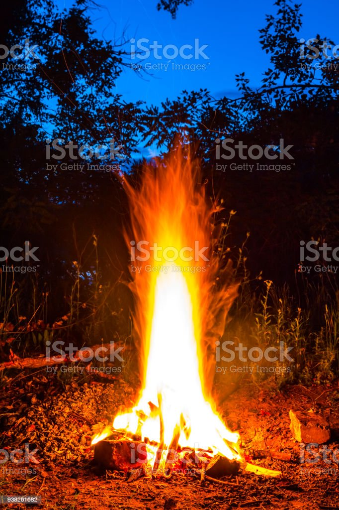 closeup camp fire in a night forest stock photo