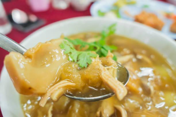 closeup chinesisches essen haifischflossen-suppe mit koriander an der spitze - hai party lebensmittel stock-fotos und bilder