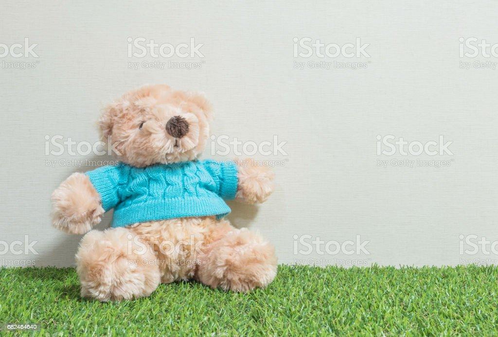 Portre sevimli boz ayı bebek suni çim zemin ve krem duvar kağıdı duvar üzerinde arka plan kopya alanı ile dokulu royalty-free stock photo