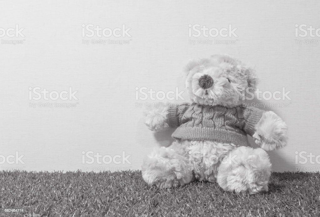 Closeup oso lindo muñeca en piso de hierba artificial y la pared de fondo crema con textura de fondo en tono blanco y negro con espacio de copia foto de stock libre de derechos