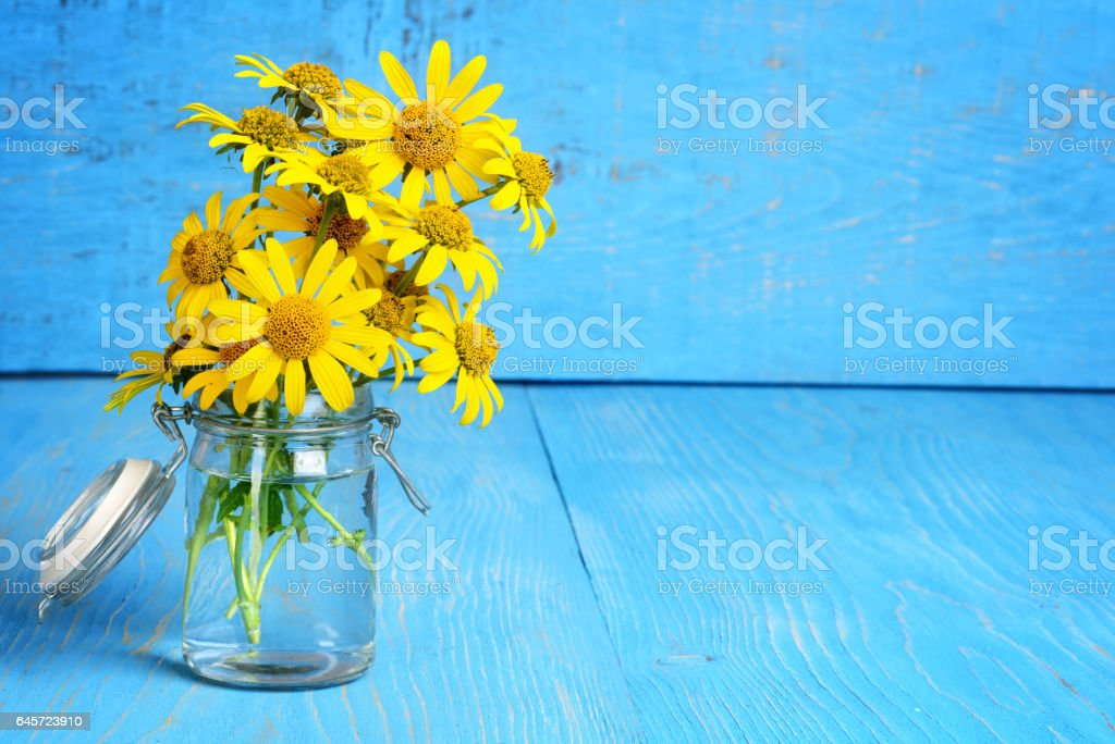 closeup daisies in a bottle stock photo