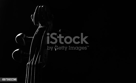 istock Close-up details of Violin head isolated on black background with copy space 697993296