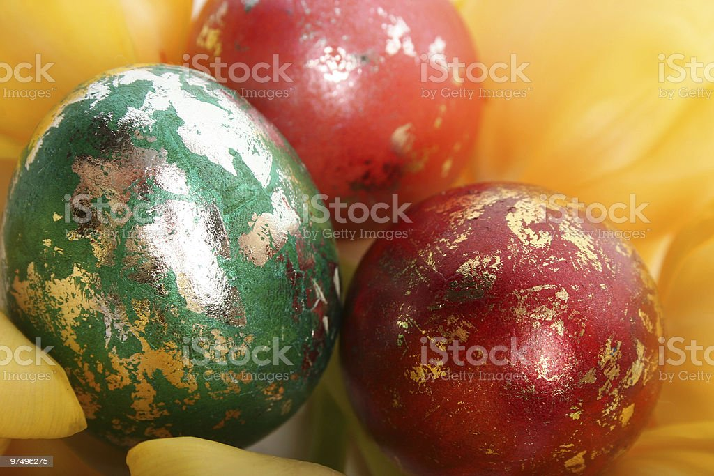 close-up eggs royalty-free stock photo