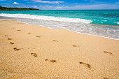 close-up Footmark on the beach,