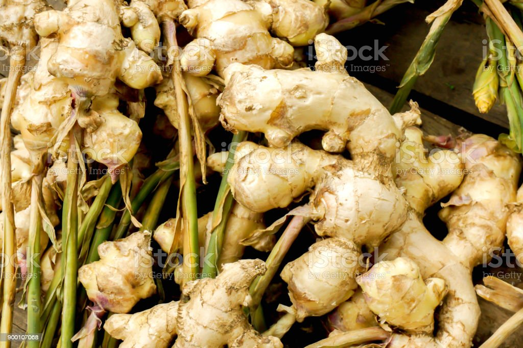 Closeup fresh gingers pile on wooden table stock photo