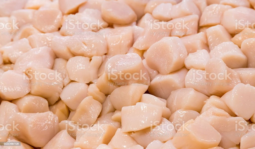 Closeup fresh jumbo scallops stock photo