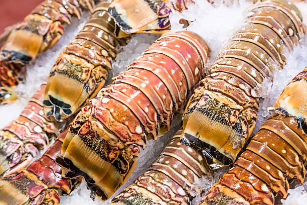 closeup fresh lobster tails stock photo