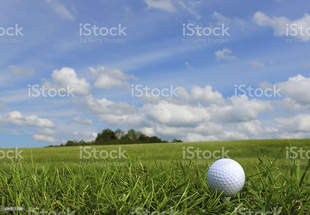 Close-up photo showing a golf ball in the grass on a golf course,...