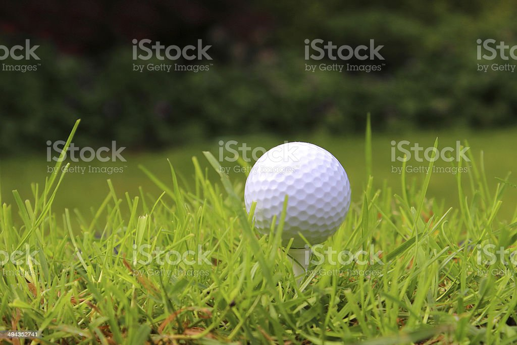 Close-up golf ball in grass on golf course, in rough royalty-free stock photo