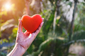 istock Closeup hand holding red heart concept on nature background for valentine day. 1201218814