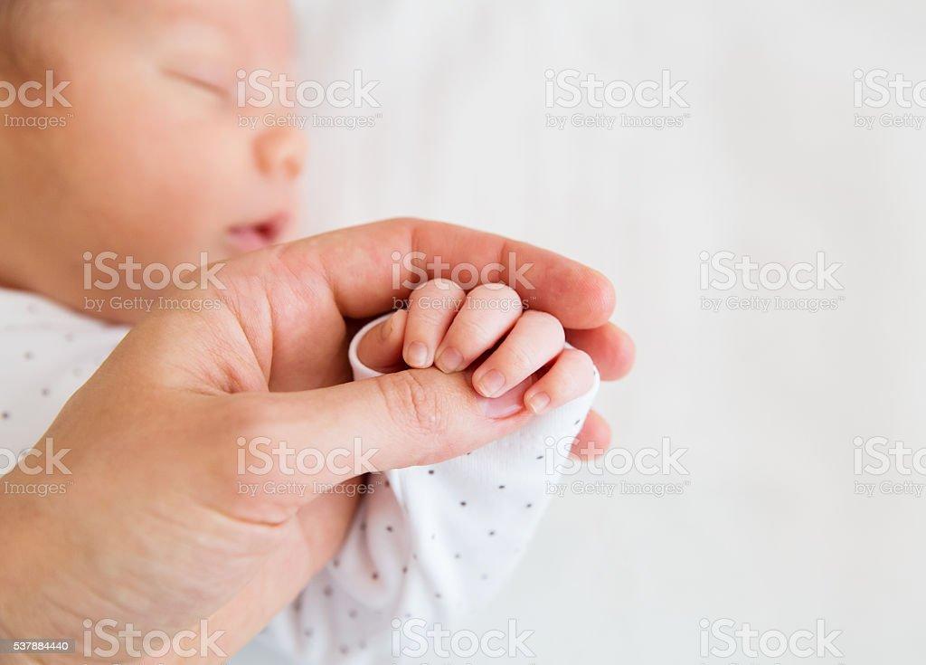 Close-up hand of a newborn baby stock photo