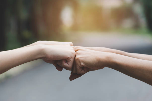 closeup hand of person team work fist bump in nature background. closeup hand of person team work fist bump in nature background. dedicated stock pictures, royalty-free photos & images