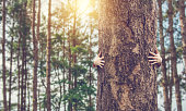 istock Closeup hands of woman hugging tree with sunlight, copy space. 1057490074