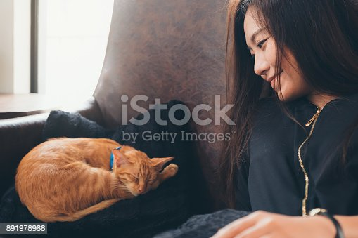istock Closeup image of a beautiful Asian woman sitting on sofa and looking at a little brown cat while its sleeping on a black pillow 891978966
