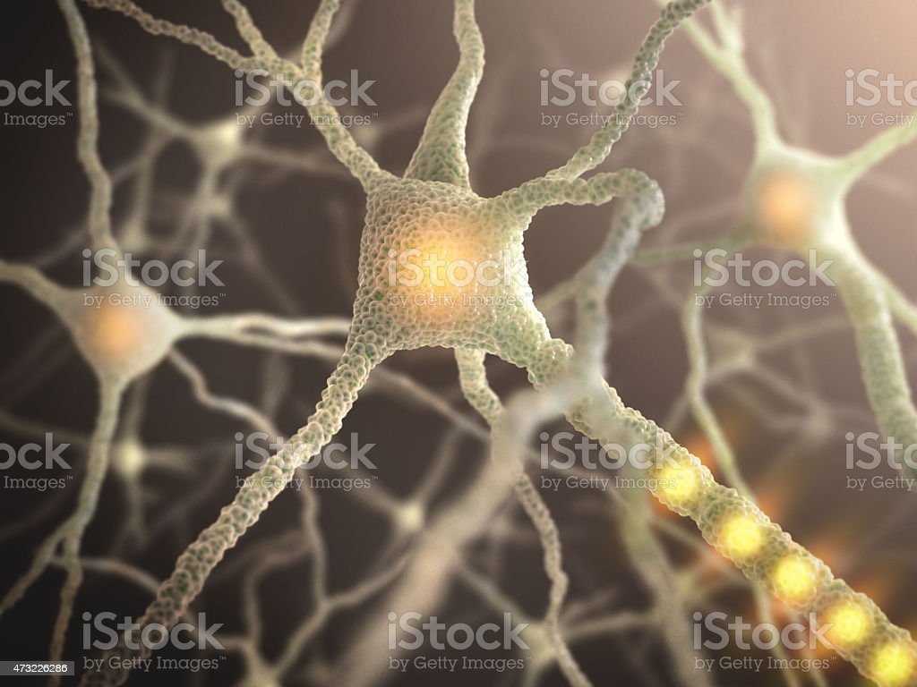 Close-up image of a nerve cell stock photo