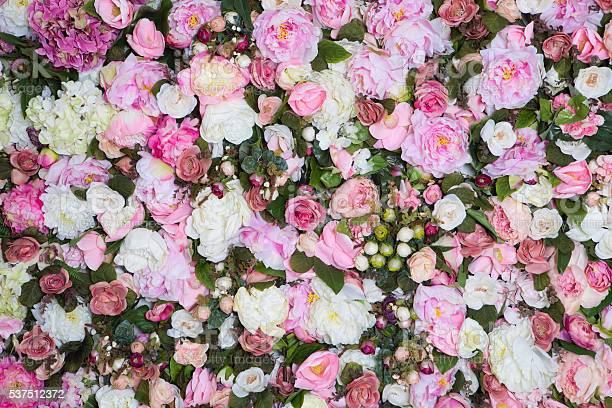 Closeup image of beautiful flowers wall background picture id537512372?b=1&k=6&m=537512372&s=612x612&h=3akcv 4db3uivpamum4kkxsc1dp2dubumedsv4orcbc=