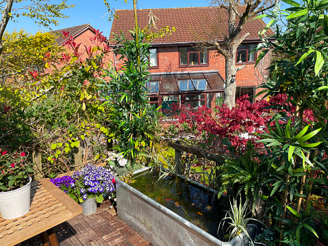 Stock photo showing elevated view across a domestic garden from a treehouse terrace platform balcony in summer with teak decking tiled al fresco dining area, zinc trough pond with solar fountain pump, goldfish and solar powered lights.