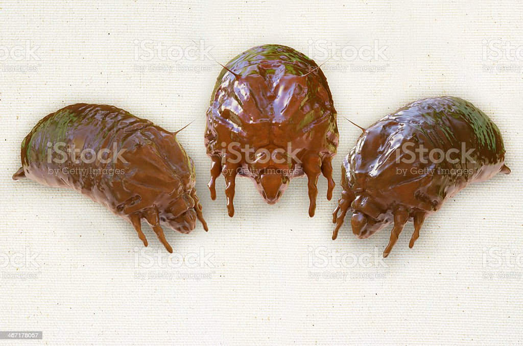 3D closeup image of three mites on a beige background stock photo