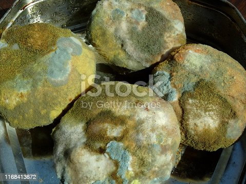 Stock photo of mold covered individual cakes that were left in a cake tin and forgotten.